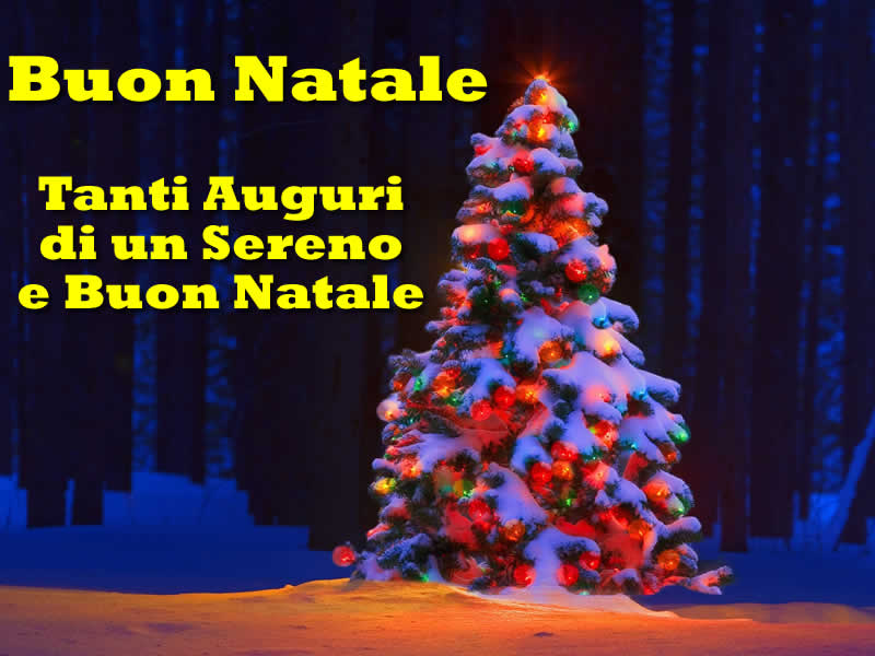 Immagini di Natale Albero Natalizio