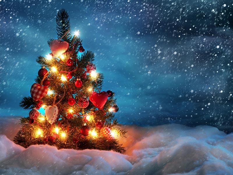 Immagini Albero di Natale: Albero di natale