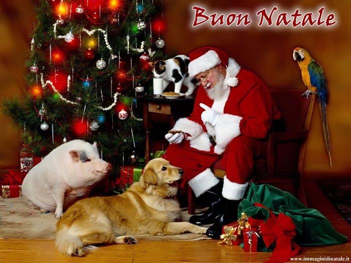 Immagini Babbo Natale: Babbo Natale con animali