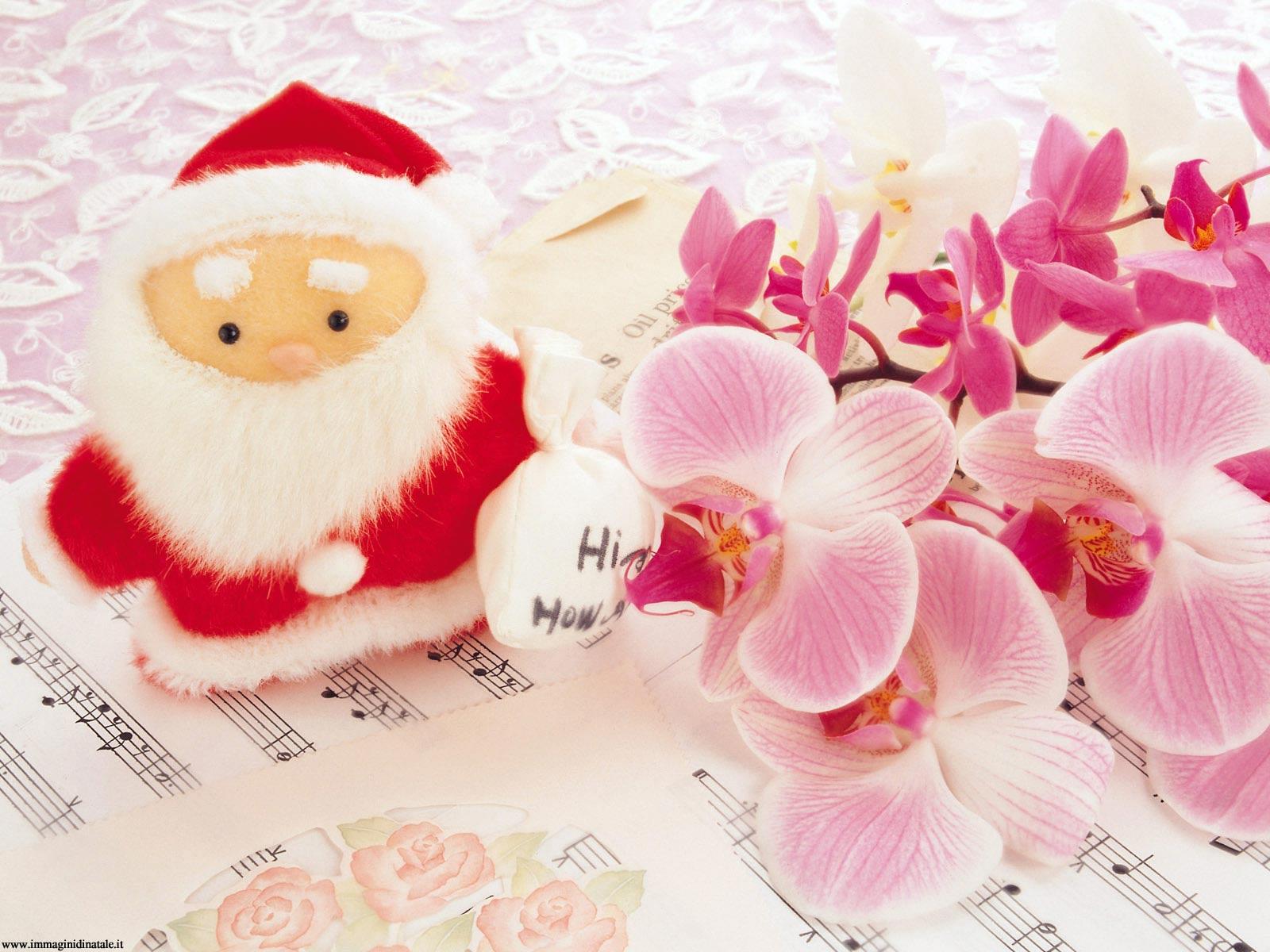 Immagini di Natale Foto Natalizia Dolce