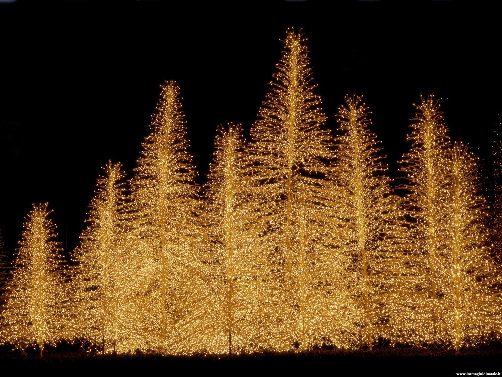 Immagini di Natale Foto natalizia Alberi di Natale