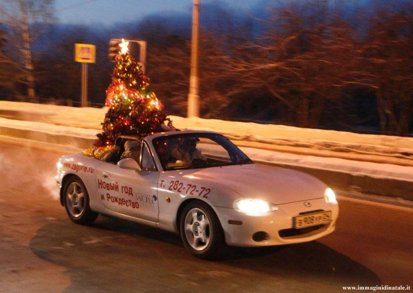 Immagini di Natale: Albero di Natale in macchina