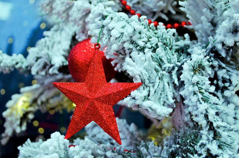 Immagine stella di natale stella di natale - Immagine di regali di natale ...