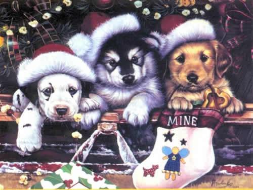 Immagini di Natale Cagnolini di Natale